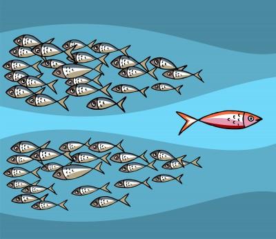 againgst the tide, breaking habitual patterns