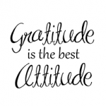 Being Grateful is Good for the Soul by Cindy Stradling CSP, CPC